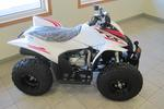 2019 Honda TRX90X Youth ATV (Ages 10 & UP)